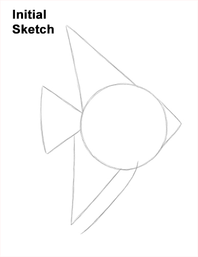 How to Draw an Altum Angelfish Blue Zebra Fish Guides Lines