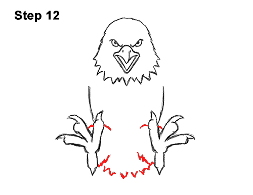 How to Draw Angry Cartoon Bald Eagle Flying Wings Talons 12