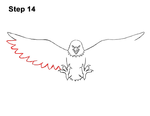 How to Draw Angry Cartoon Bald Eagle Flying Wings Talons 14