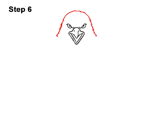 How to Draw Angry Cartoon Bald Eagle Flying Wings Talons 6