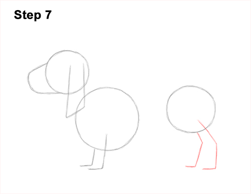 How to Draw a Basset Hound Puppy Dog Side View 7