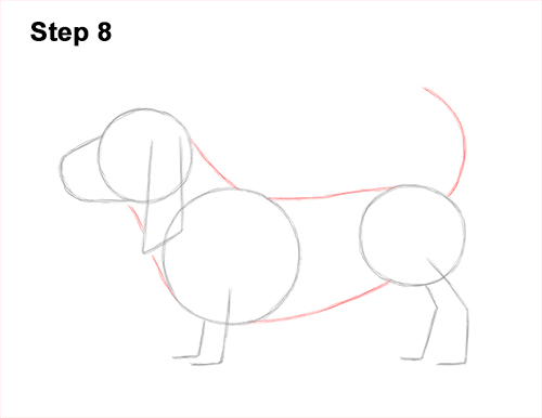 How to Draw a Basset Hound Puppy Dog Side View 8