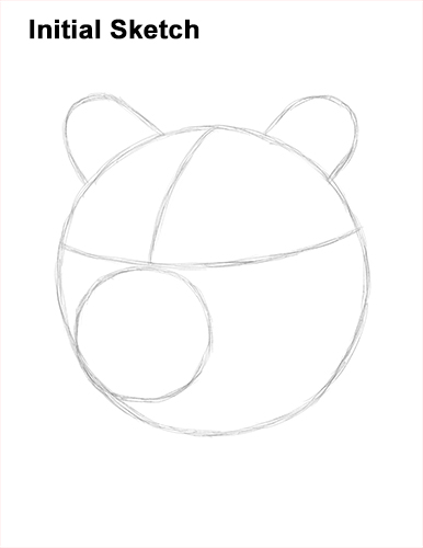 How to Draw a Grizzly Brown Bear Head Portrait Guide Lines
