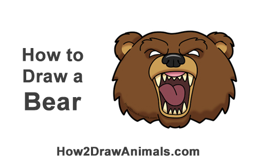 How to Draw a Cartoon Grizzly Bear Head Roaring