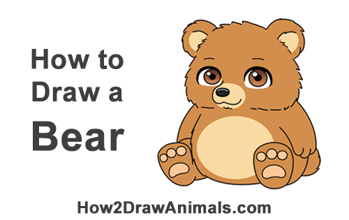 How to Draw a Cute Little Mini Chibi Cartoon Brown Bear Cub