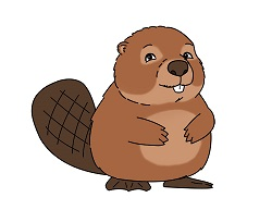 How to Draw a Cute Cartoon Beaver