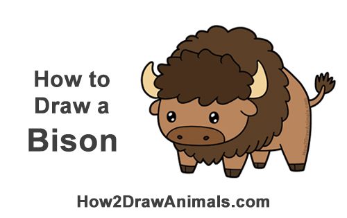 How to Draw Cute Cartoon Bison Buffalo