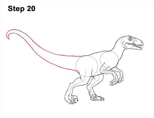 How to Draw Blue Velociraptor Jurassic World Dinosaur 20