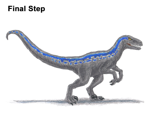 How to Draw Blue Velociraptor Jurassic World Dinosaur Color
