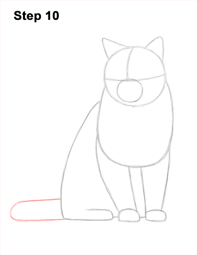 How to Draw British Blue Shorthair Cat Sitting 10