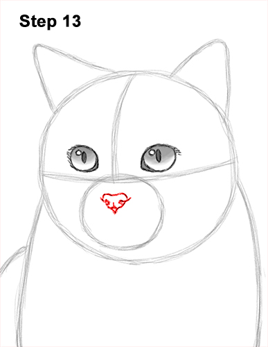 How to Draw British Blue Shorthair Cat Sitting 13