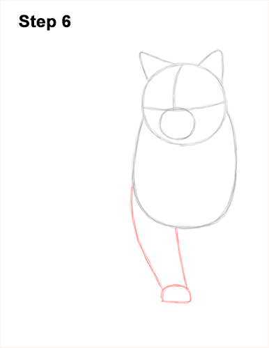 How to Draw British Blue Shorthair Cat Sitting 6