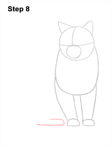 How to Draw British Blue Shorthair Cat Sitting 8