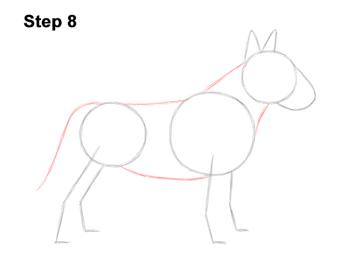 How to Draw a Bull Terrier Dog Puppy Side View 8