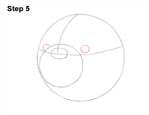 How to Draw a Bulldog Head Portrait Face 5