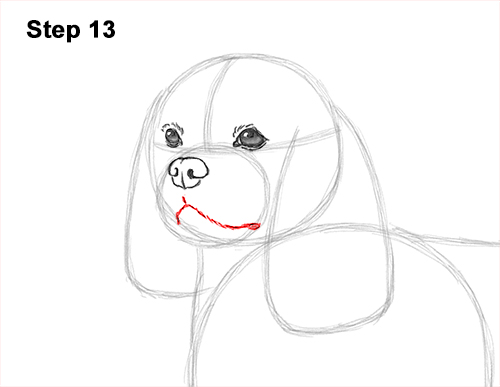 How to Draw a Cavalier King Charles Spaniel Puppy Dog 13