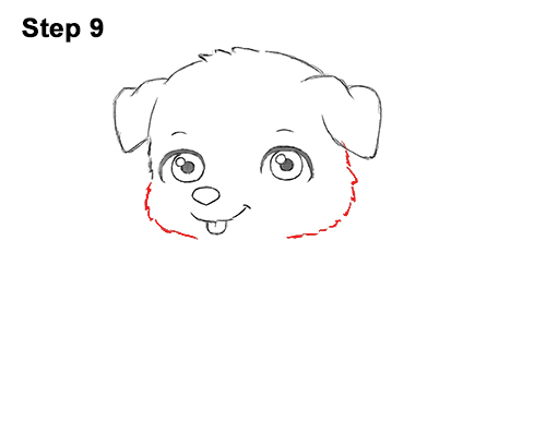 Draw Cartoon Puppy Dog Retriever 9