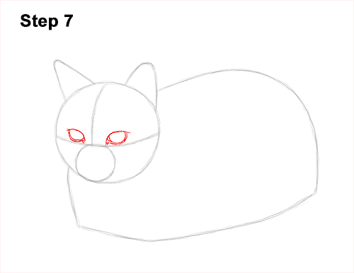 How to Draw a Tabby Kitty Cat Sitting Laying Roosting 7