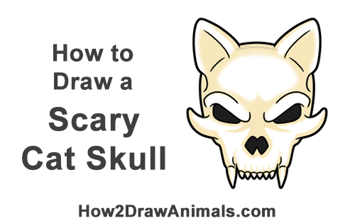 How to Draw Scary Cartoon Cat Skull Halloween
