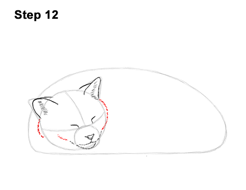 How to Draw a Cat Kitten Sleeping 12