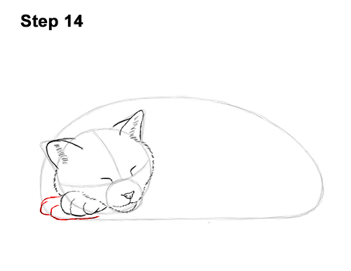 How to Draw a Cat Kitten Sleeping 14