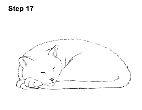 How to Draw a Cat Kitten Sleeping 17