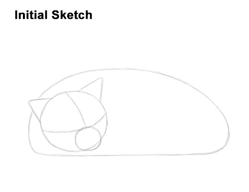 How to Draw a Cat Kitten Sleeping Guide Lines