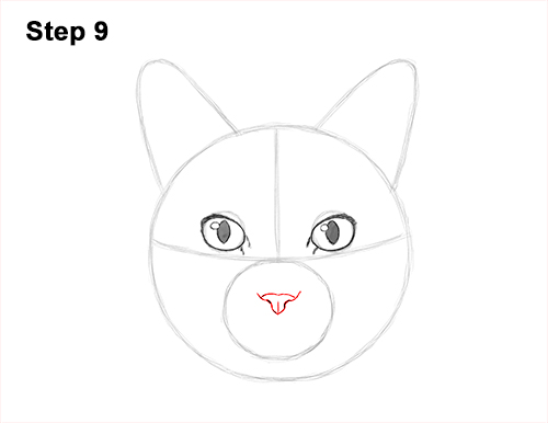 How to Draw a Tabby Kitty Cat Head Detail 9