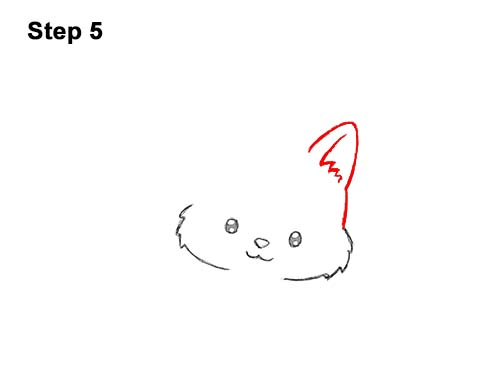 How to Draw Cute Cartoon Cat Kitten Witch Hat Halloween 5
