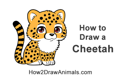 How to Draw a Cute Cartoon Cheetah Chibi Kawaii