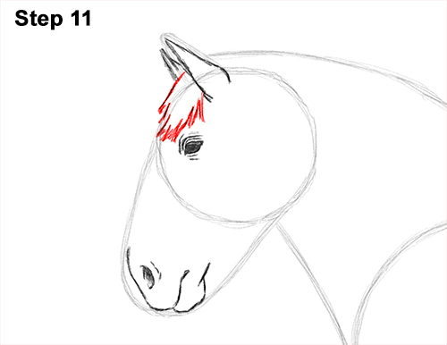 Draw Horse Clydesdale Shire 11