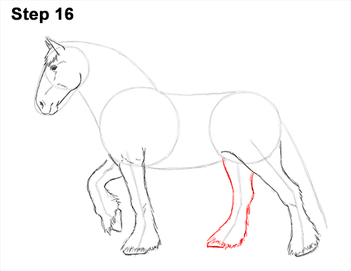 Draw Horse Clydesdale Shire 16