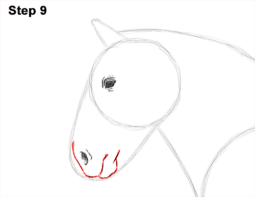 Draw Horse Clydesdale Shire 9