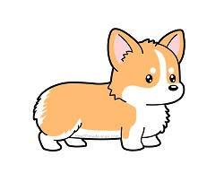 How to draw a Cute Cartoon Corgi Dog