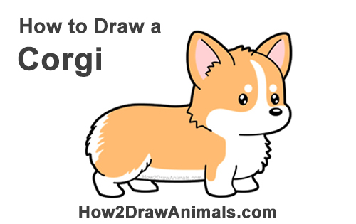 How to Draw Cute Cartoon Corgi Puppy Dog Chibi Kawaii