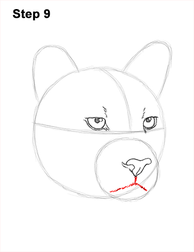 How to Draw a Cougar Mountain Lion Puma Panther Head 9