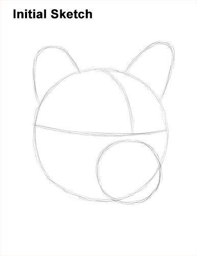 How to Draw a Cougar Mountain Lion Puma Panther Head Guide Lines