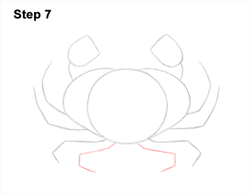 How to Draw a Brown Edible Red Crab 7