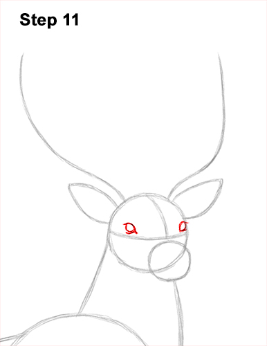 How to Draw Noble Deer Antlers Majestic Buck Stag 11