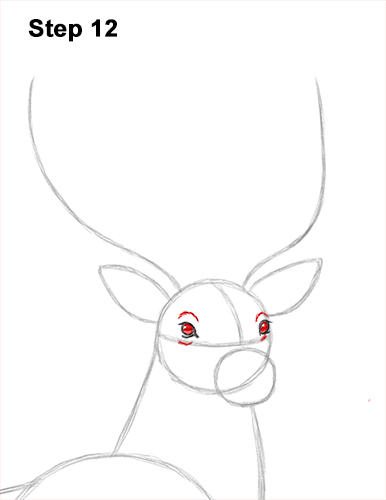 How to Draw Noble Deer Antlers Majestic Buck Stag 12