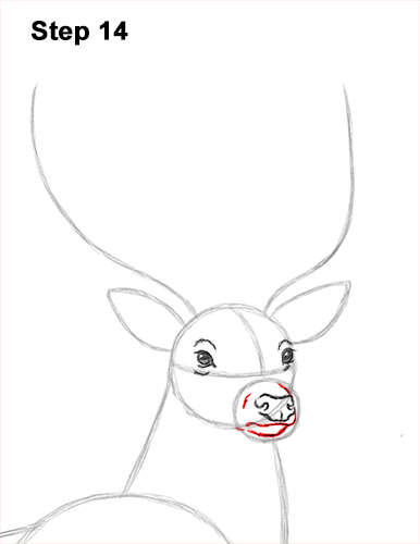 How to Draw Noble Deer Antlers Majestic Buck Stag 14