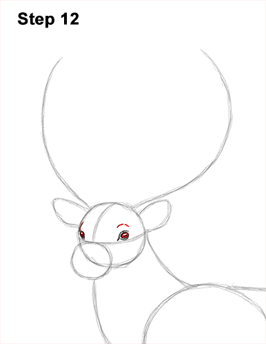 How to Draw a Red Deer Buck Stag Antlers 12