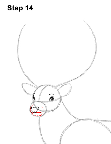 How to Draw a Red Deer Buck Stag Antlers 14
