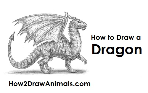 Draw Dragon