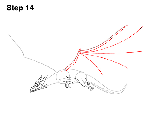 How to Draw a Dragon Flying Wings 14