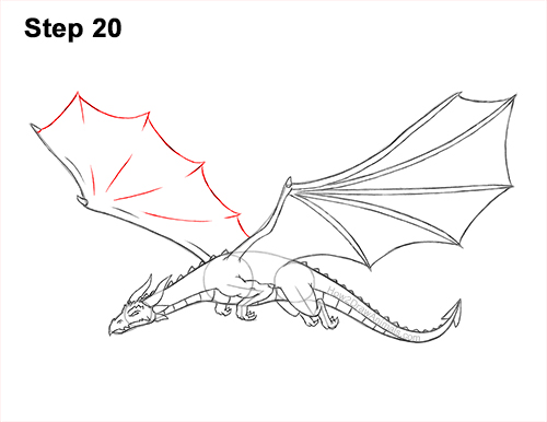 How to Draw a Dragon Flying Wings 20