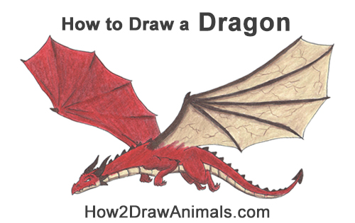 How to Draw a Dragon Flying Wings Color