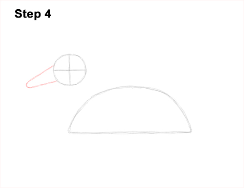 How to Draw a Male Mallard Duck Color 4