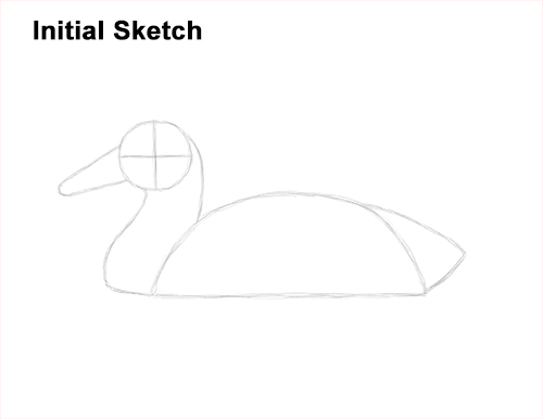 How to Draw a Male Mallard Duck Color Guide Lines