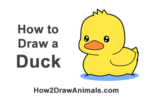 How To Draw A Duck Cartoon Video Step By Step Pictures